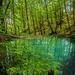 stratený rybník