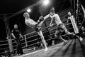 Muay Thai Evening IV