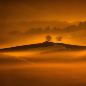 Krajina ticha