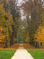 Láska jesenná