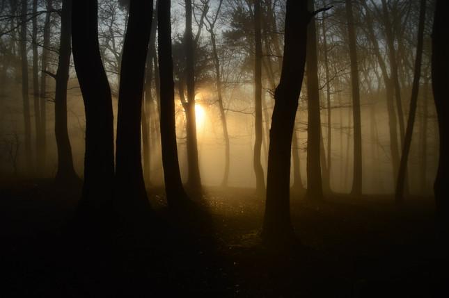 Lúče v hmle