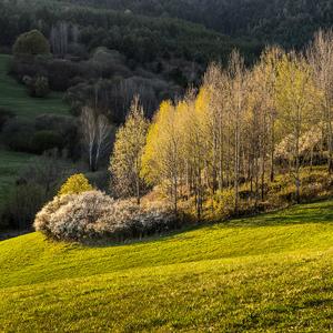 Jar v Istebnom