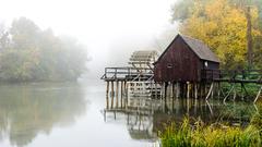 V jesennej hmle