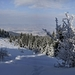 v zime na horách