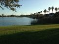 Tropical park v Miami
