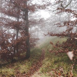 Prechádzka v oblakoch