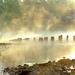 rieka v hmle