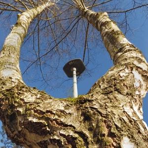Strom s osvetlením