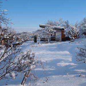 zima január 2015