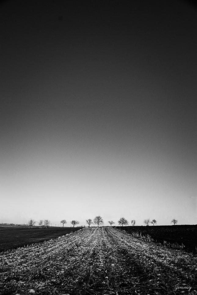 stromy_cb