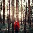Stůj tiše...les dýchá...