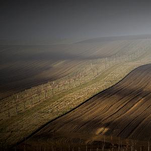 Moravské línie...