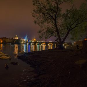 Labute spod Karlovho mostu