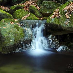 Vrbinský potok, Kotmanová
