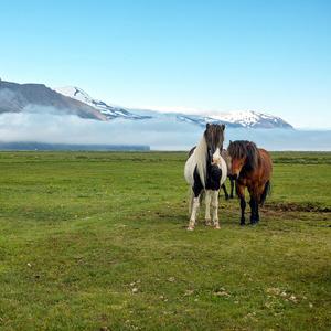 Islandské pohľady
