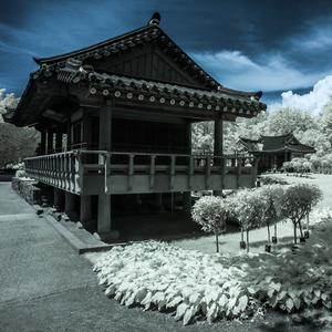 korejska zahrada