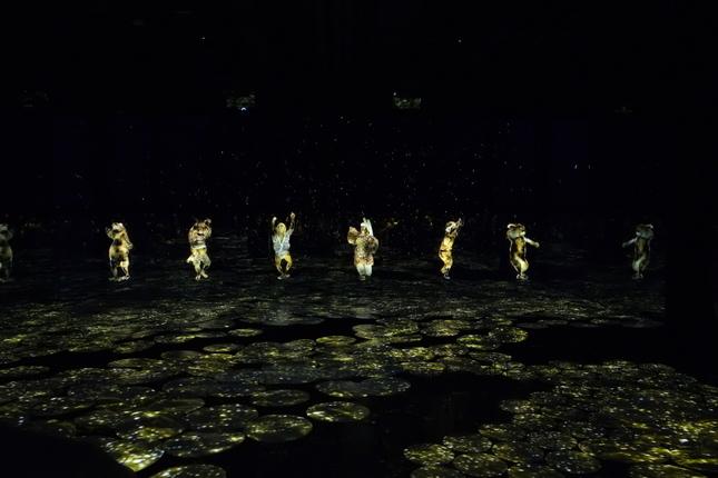 Tancujuce hologramy