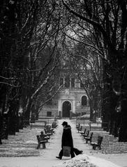 Krížom cez park
