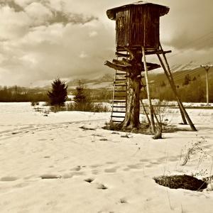 Zimné popoludnie