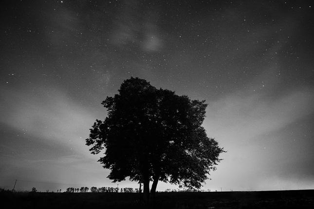 Nočné Fukoty