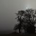 domček v hmle