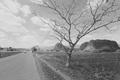 Na ceste do Vinales