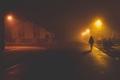 predvianočná prechádzka
