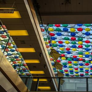 Dom plný dáždnikov vo farbe