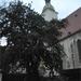 Dom Sv. Martina