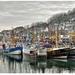 Rybarske mestecko Newlyn