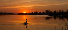 Slnečné jazerá