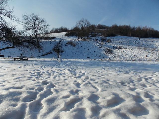 stopy v snehu