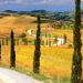 Tuscany in Summer