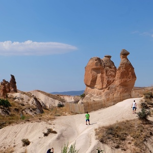 Stone Camel