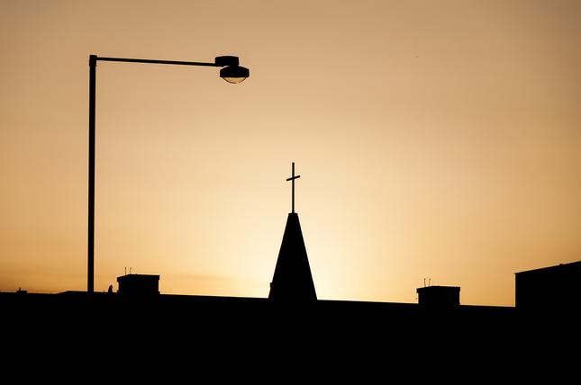 viera pod lampou