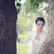 Medzi stromami I