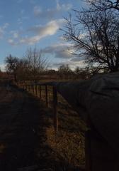 pri plote