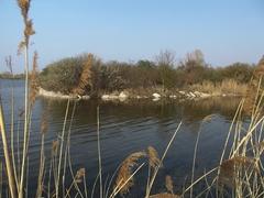 rybník**