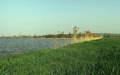 rybník*