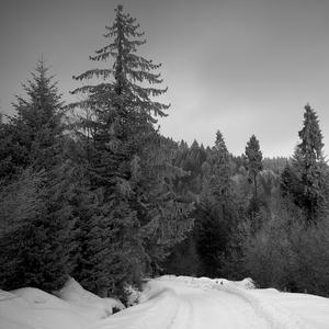 Zima Ružbachy