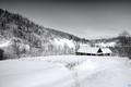 Zima na vidieku II.