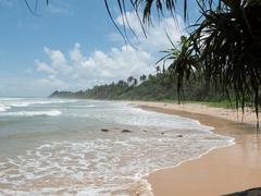 Pláž na Srí Lanke.
