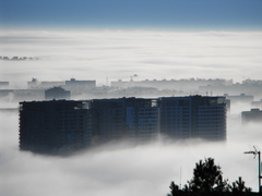 Hmla v Bratislave - Tri veze
