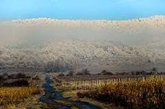 Zima v M. Karpatoch
