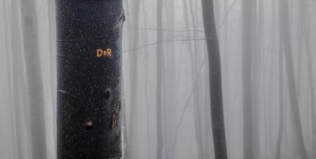 (H)DR