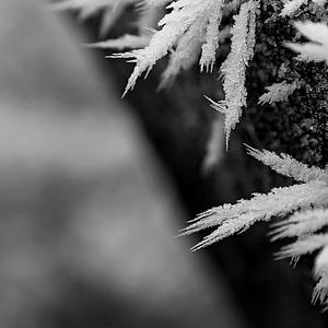 ostrá zima II