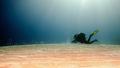 Dola na pláži s úhor(ka)mi