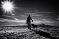 Muž, pes a slnko