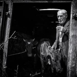 Obchodník s dobytkom