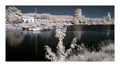 Zamrznutá píščanská lodenica (IR